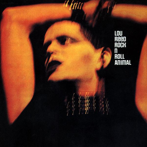 Animal - LP