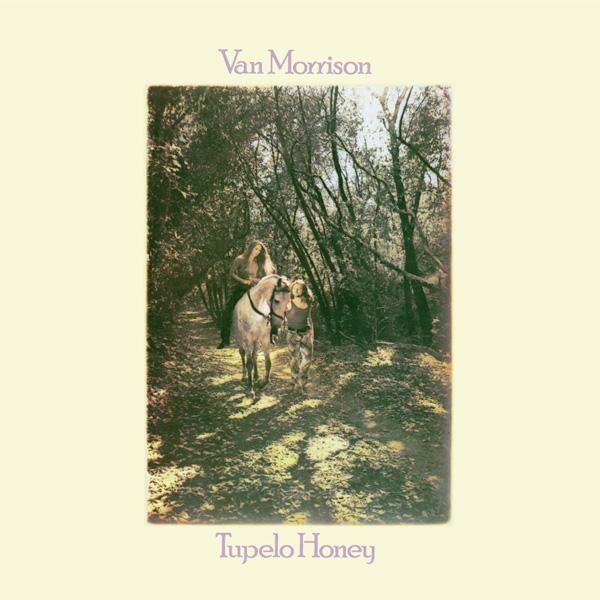 Tupelo Honey Lp Vinile Van Morrison Vendita Vinili